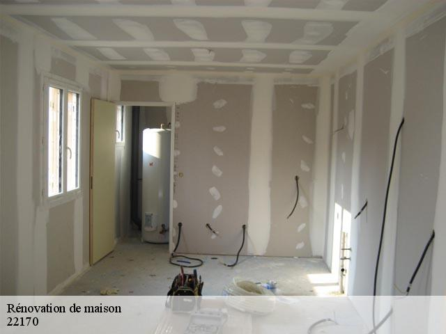 Rénovation de maison  22170