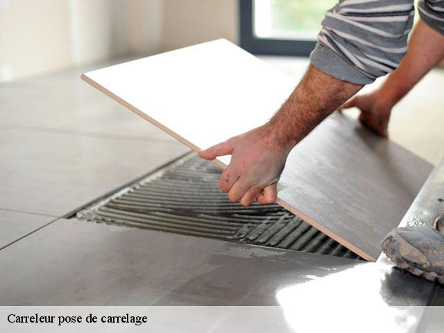 Carreleur pose de carrelage  22810